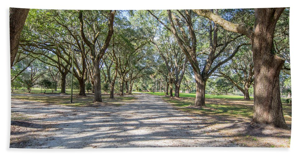 Allee Of Oaks Bath Sheet featuring the photograph Lowcountry Allee Of Oaks by Dale Powell
