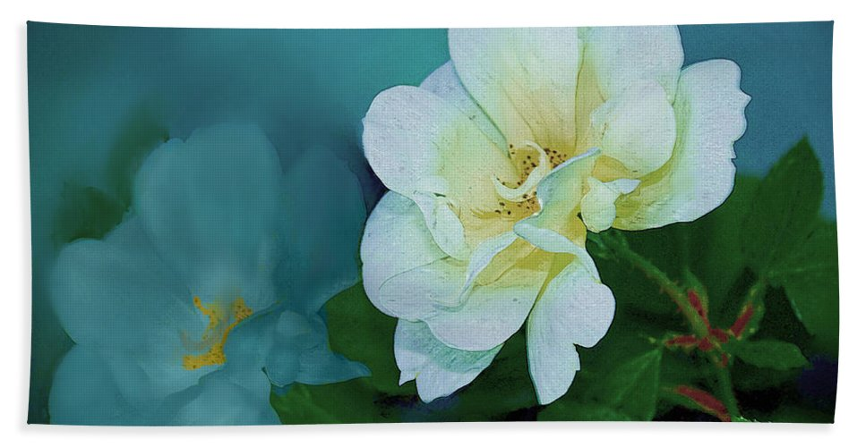 Blossom Hand Towel featuring the photograph Apple Blossom by Bonnie Willis