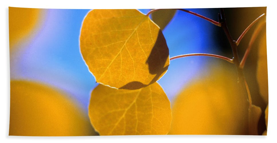 Fall Bath Sheet featuring the photograph Aspen Glow by Jerry McElroy
