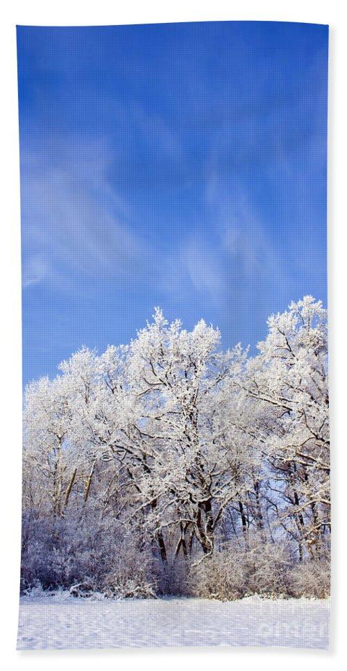 Abstract Bath Sheet featuring the photograph Beautiful Winter Landscape by Dan Radi