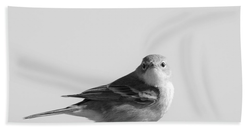 Warbler Bath Sheet featuring the photograph Bird On A Wire by Sandy Swanson