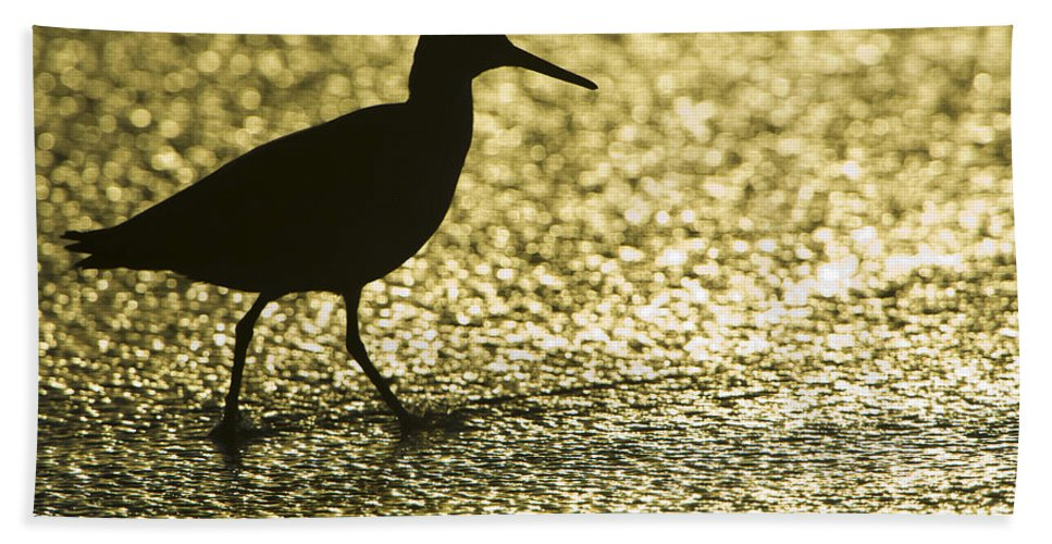 Nature Bath Sheet featuring the photograph Bird Silhouette by John Shaw