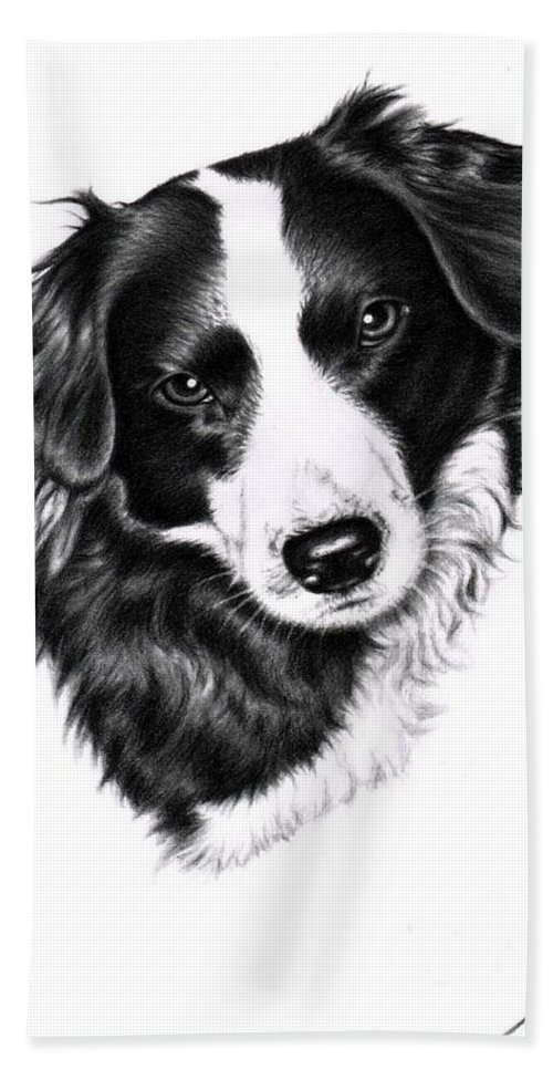 Dog Hand Towel featuring the drawing Border Collie by Nicole Zeug