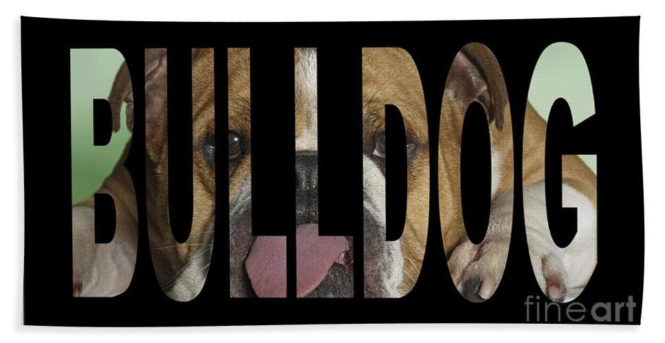Bulldog Art Bath Sheet featuring the mixed media Bulldog by Marvin Blaine