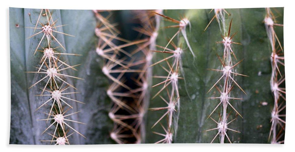 Cactus Bath Sheet featuring the photograph Cactus by Henrik Lehnerer