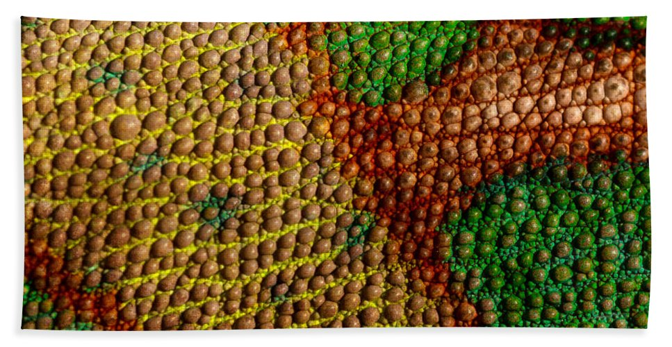 Abstract Hand Towel featuring the photograph Chameleon by TouTouke A Y