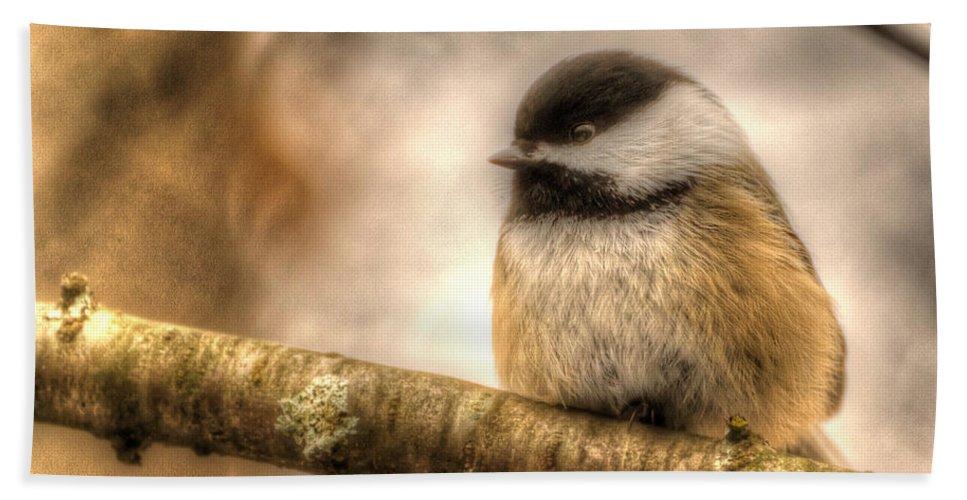 Black-capped Chickadee Bath Sheet featuring the photograph Chickadee Magic by Joshua McCullough