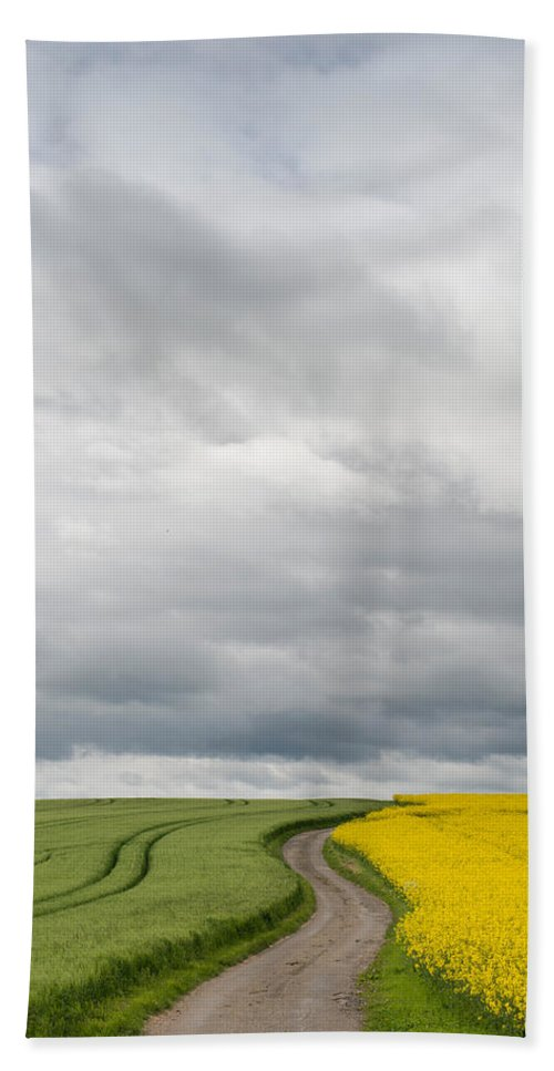 Photography Bath Sheet featuring the photograph Dirt Road Passing Through Grain by Panoramic Images