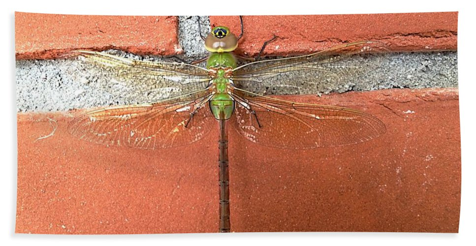 Brick Wall Hand Towel featuring the photograph Dragon by Joseph Yarbrough