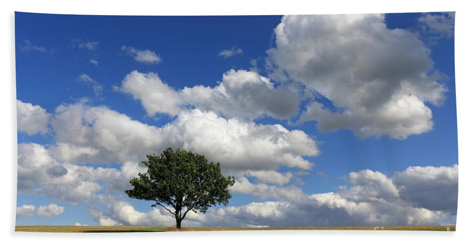 Dramatic Clouds And The Tree Epsom Downs Surrey England Uk English British Britain Landscape Countryside Wow Fluffy Cloud Single Lone Depth Cumulus White Blue Sky Skies Drifting Hand Towel featuring the photograph Dramatic Clouds And The Tree by Julia Gavin
