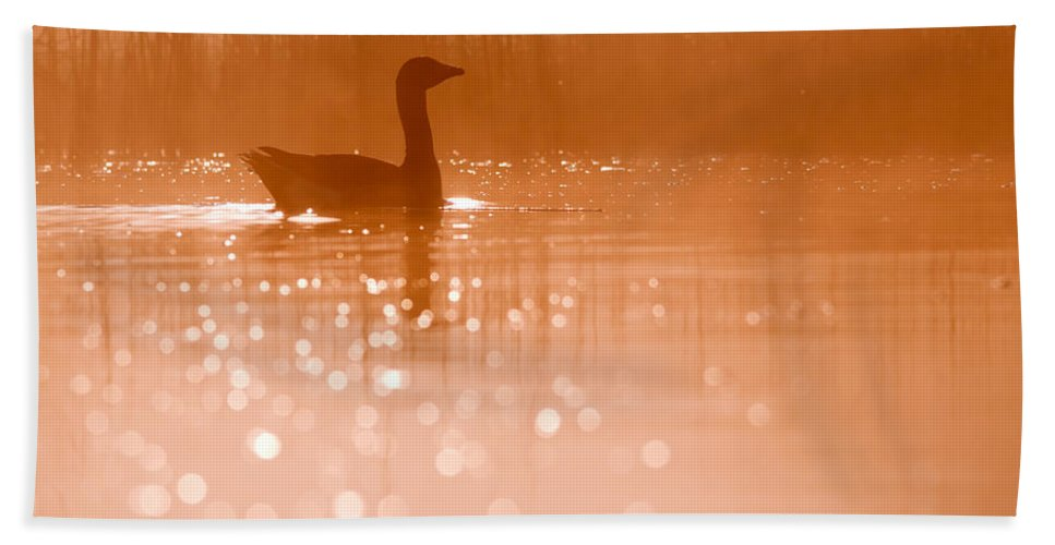 Greylag Goose (anser Anser) At A Very Early Bath Towel featuring the photograph Early Morning Magic by Roeselien Raimond