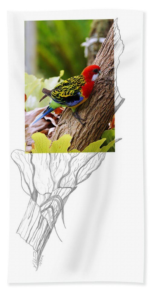 Eastern Rosella Hand Towel featuring the photograph Eastern Rosella 2am-9396 by Andrew McInnes