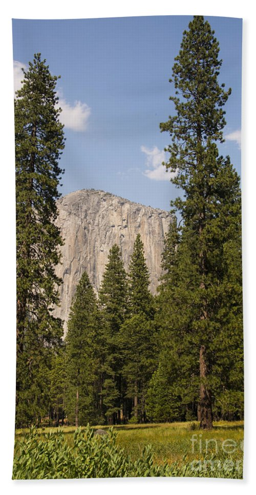 Yosemite National Park California California Parks Tree Trees Mountain Mountains Peak Peaks Forest Forests Landscape Landscapes El Capitan Landmark Landmarks Meadow Meadows Bath Sheet featuring the photograph El Capitan by Bob Phillips