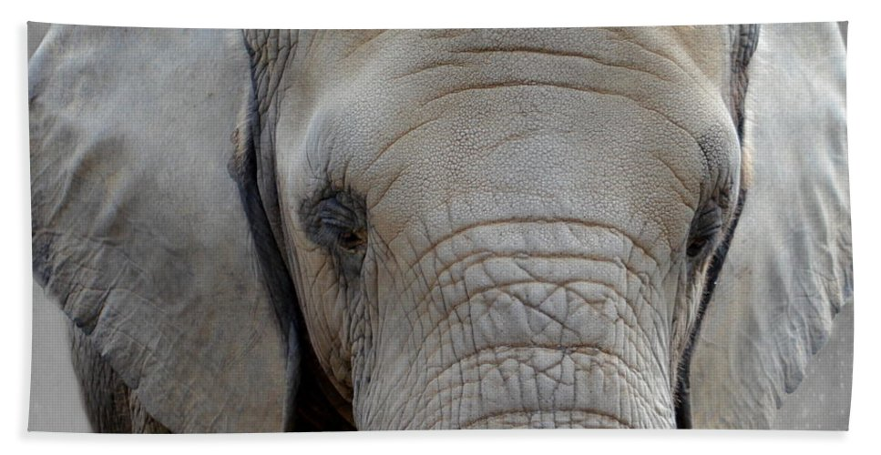 Elephant Bath Sheet featuring the photograph Elephant by Heike Hultsch