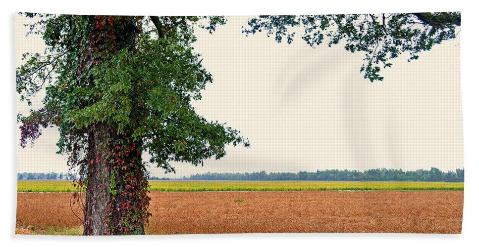 Nature Bath Sheet featuring the photograph Farmland View by Debbie Portwood