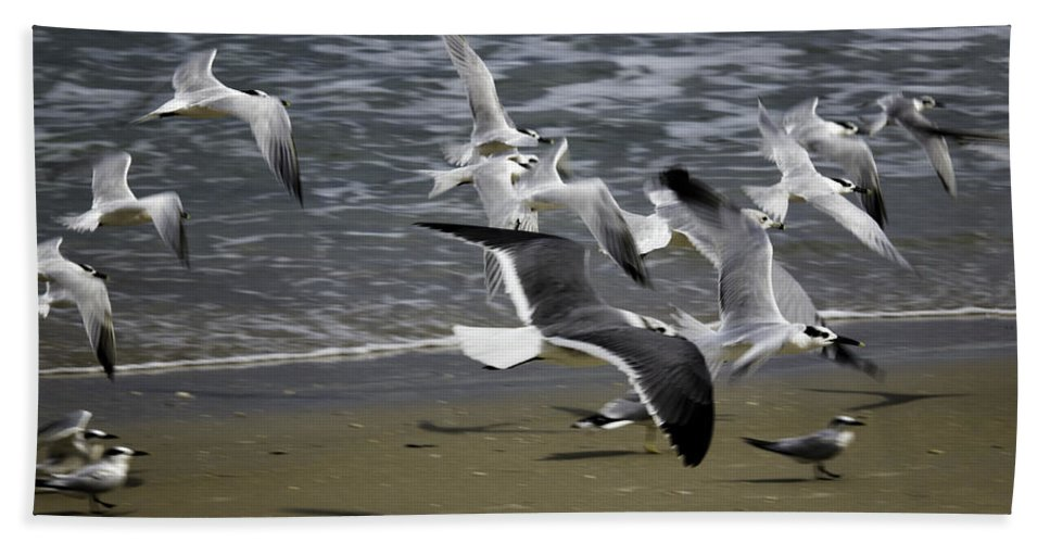 Landscape Hand Towel featuring the photograph Flight by Fran Gallogly