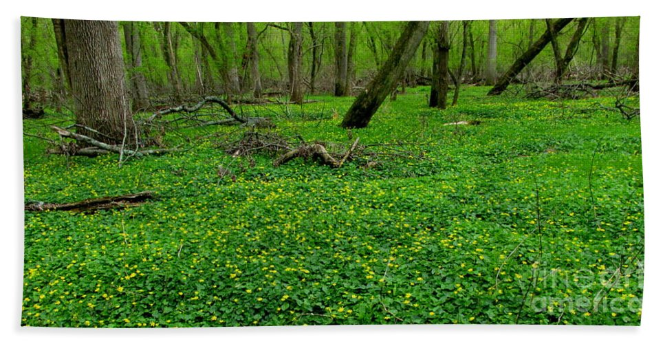 Yellow Forest Flowers Bath Sheet featuring the photograph Floral Forest Floor by Joshua Bales