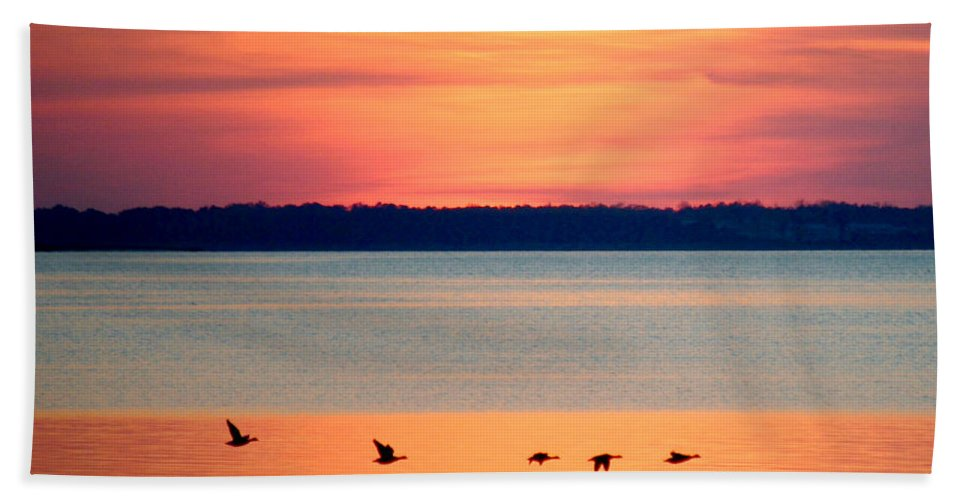 Beach Bum Pics Bath Sheet featuring the photograph Flying North - Wildlife Lighter by William Bartholomew