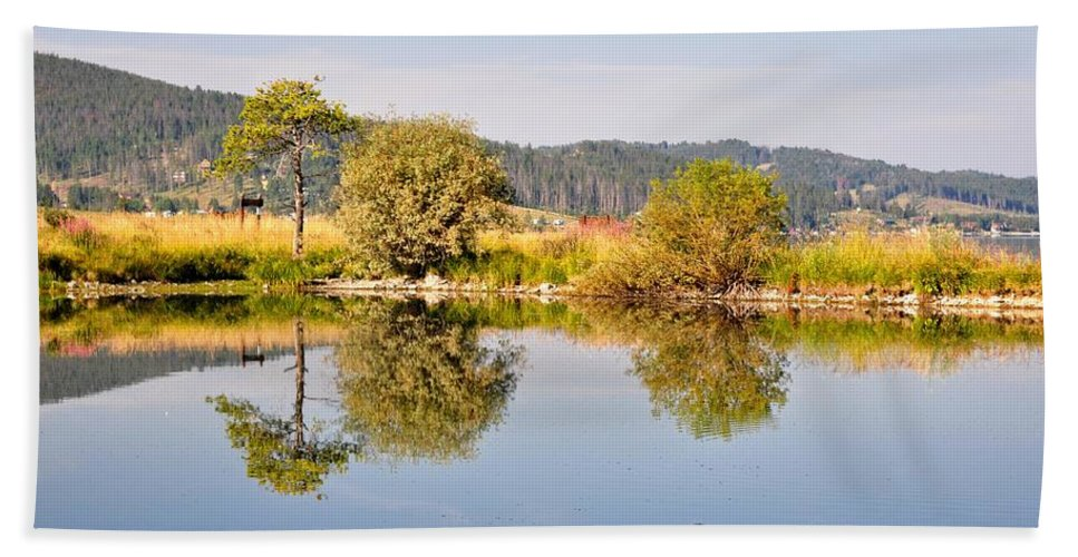 George Town Bath Sheet featuring the photograph George Town Lake Reflections by Image Takers Photography LLC - Laura Morgan