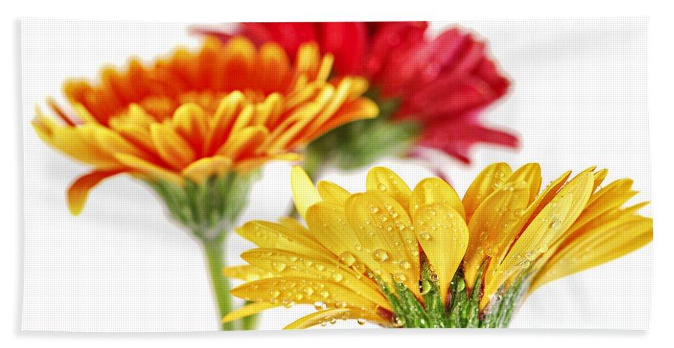Flower Bath Sheet featuring the photograph Gerbera Flowers by Elena Elisseeva