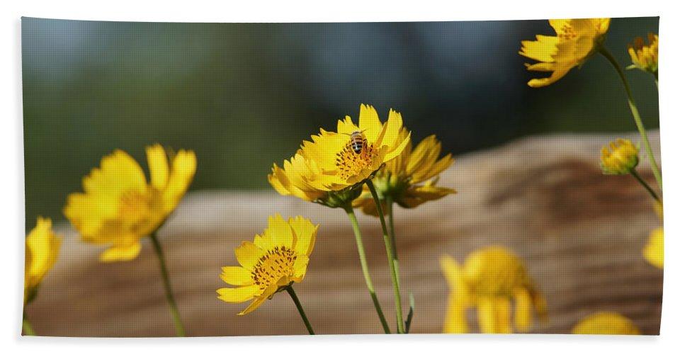 Sunflower Bath Sheet featuring the photograph Good Morning by Ernie Echols