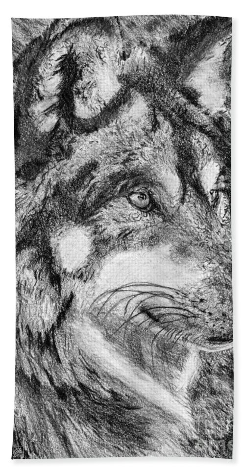 Mccombie Bath Sheet featuring the drawing Gray Wolf Watches And Waits by J McCombie