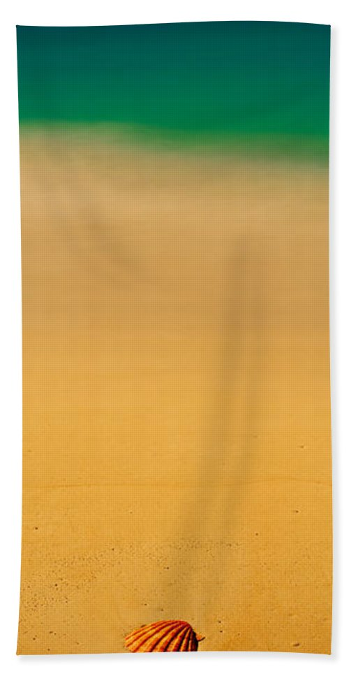 Photography Hand Towel featuring the photograph High Angle View Of A Conch Shell by Panoramic Images