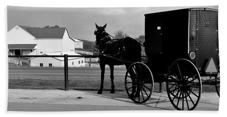 Horse Hand Towel featuring the photograph Horse And Buggy And Farm by Frozen in Time Fine Art Photography