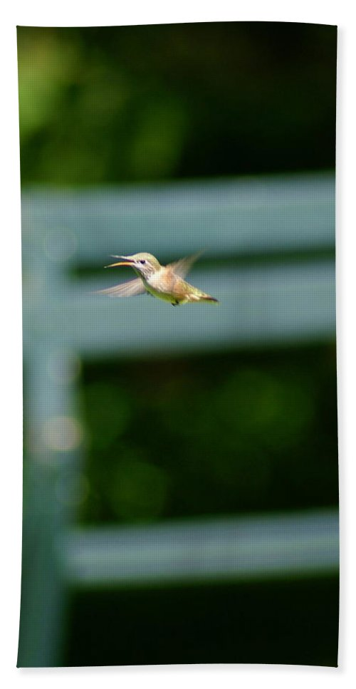 Hummingbird Hand Towel featuring the photograph Hummer In Flight by Ben Upham III