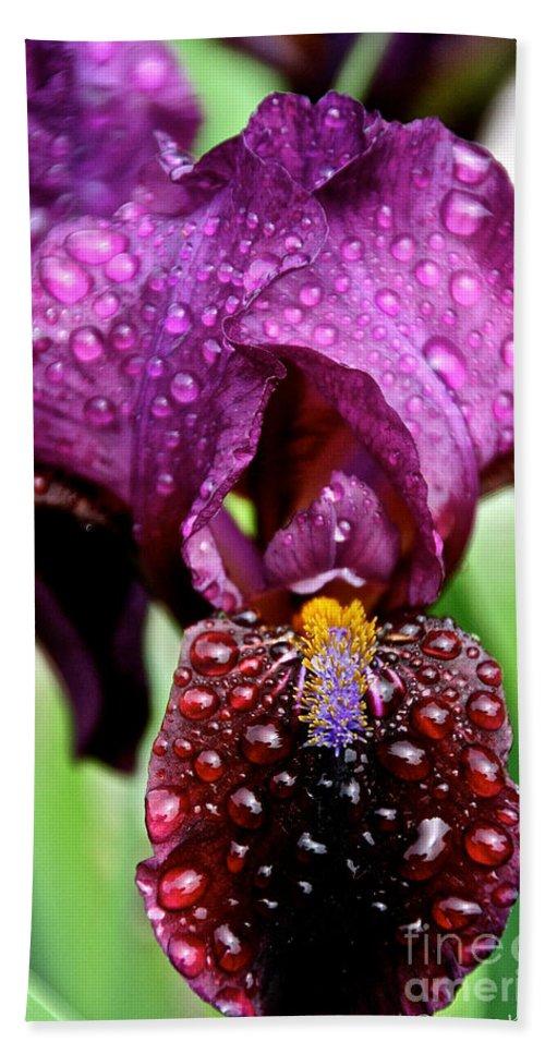 Flower Bath Sheet featuring the photograph Iris Tongue by Susan Herber
