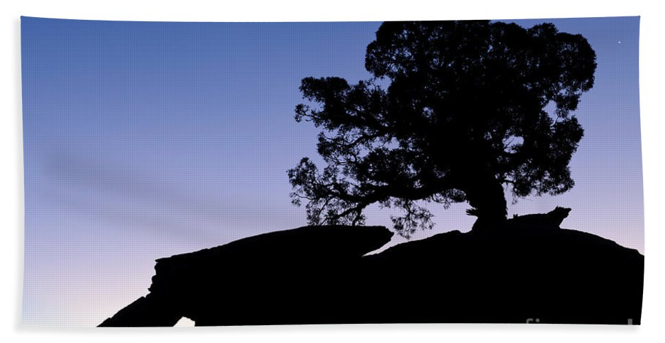 Nature Bath Sheet featuring the photograph Juniper Tree At Dawn by John Shaw