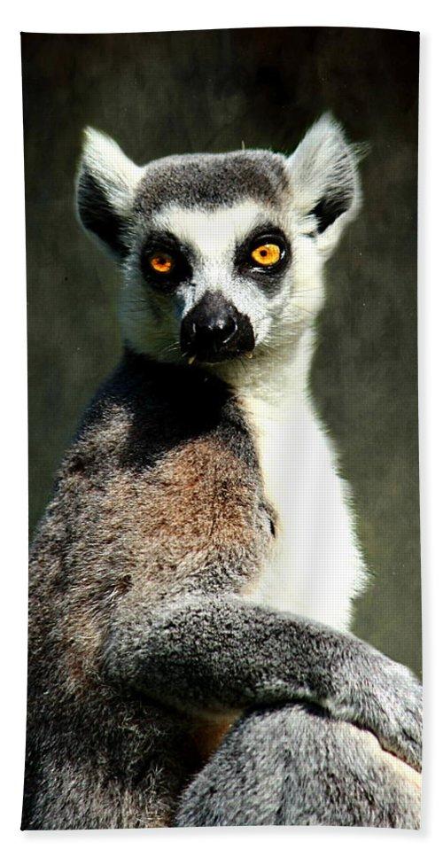 Animal Bath Sheet featuring the photograph Lemur by Heike Hultsch