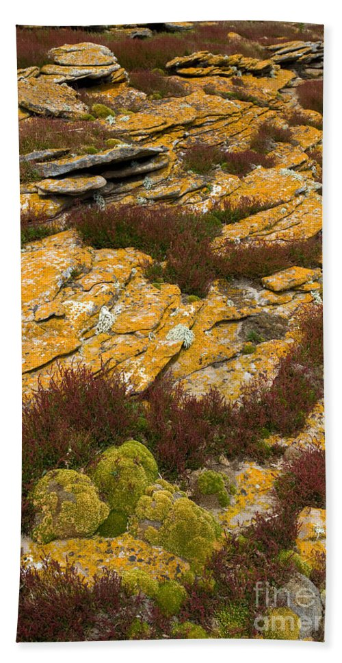 Lichen Bath Sheet featuring the photograph Lichened Rocks by John Shaw