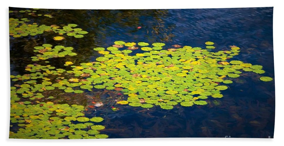 Water Lily Bath Sheet featuring the photograph Lily Pads by Les Palenik