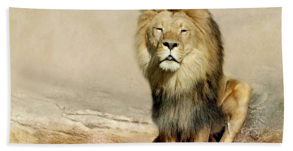Lion Bath Sheet featuring the photograph Lion by Heike Hultsch