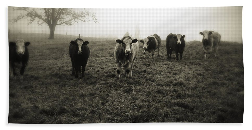 Fog Bath Towel featuring the photograph Livestock by Les Cunliffe