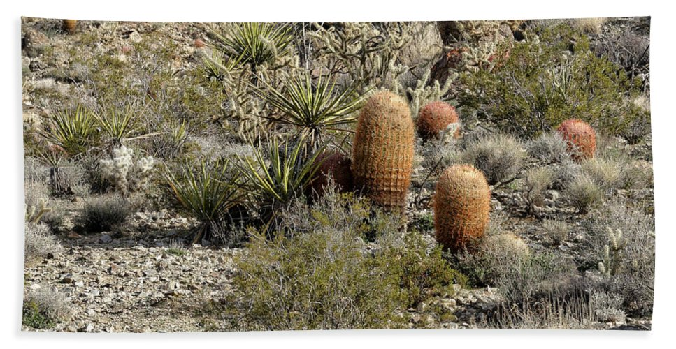 Cactus Bath Sheet featuring the photograph Mojave Desert Cactus by Jim Thompson