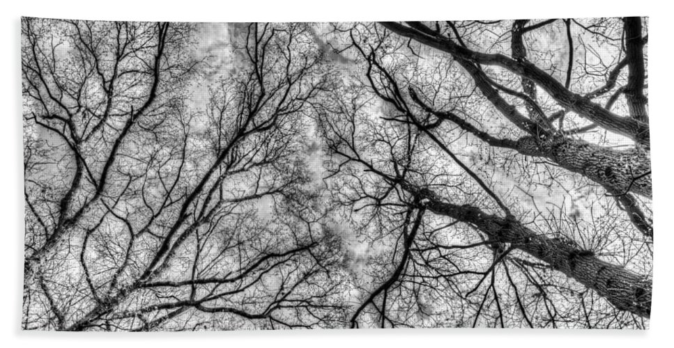 Forest Hand Towel featuring the photograph Monochrome Forest by David Pyatt