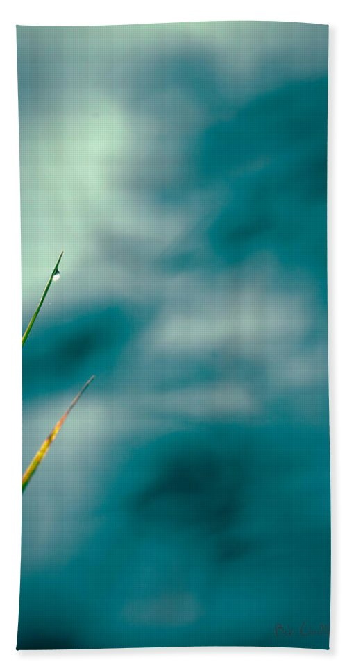 Grass Bath Sheet featuring the photograph Morning Dew by Bob Orsillo