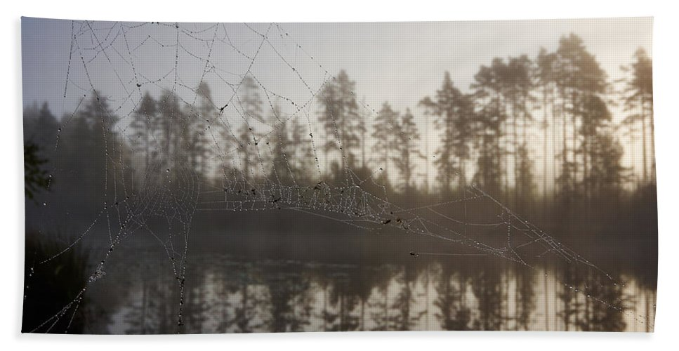 Finland Bath Sheet featuring the photograph Natural Network by Jouko Lehto