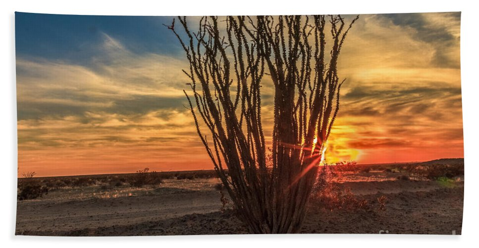Sunrise Bath Sheet featuring the photograph Ocotillo Sunset by Robert Bales