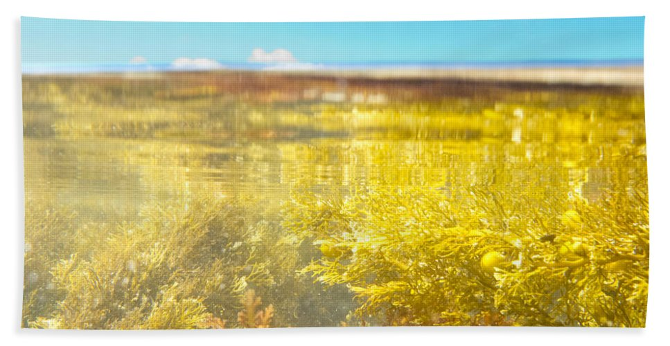 Above Bath Towel featuring the photograph Over-under Split Shot Of Clear Water In Tidal Pool by Stephan Pietzko