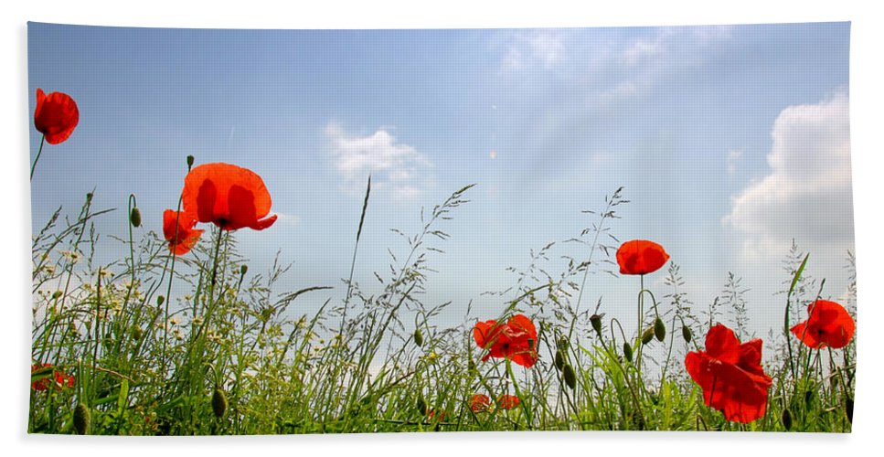Agriculture Hand Towel featuring the photograph Poppies by TouTouke A Y