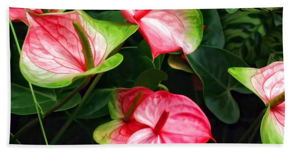 Pink Flower Hand Towel featuring the photograph Pretty by Joyce Baldassarre