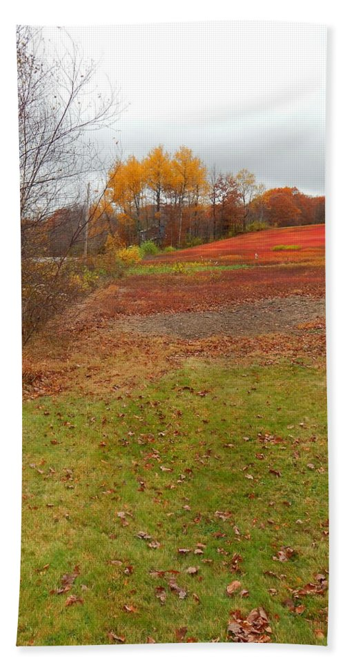 White Birches Rolling Green Lawn Bright Foliage And A Weird Beautiful Natural Ref Field Route 17 Maine Bath Sheet featuring the photograph Red Field by Expressionistart studio Priscilla Batzell