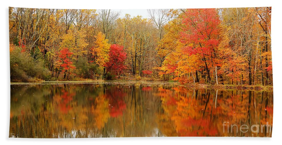 Autumn Hand Towel featuring the photograph Reflections Of Fall by Traci Law