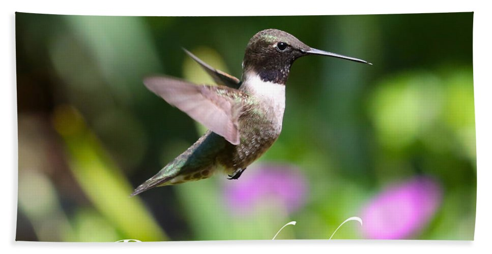 Hummingbird Bath Sheet featuring the photograph Rise And Shine by Carol Groenen
