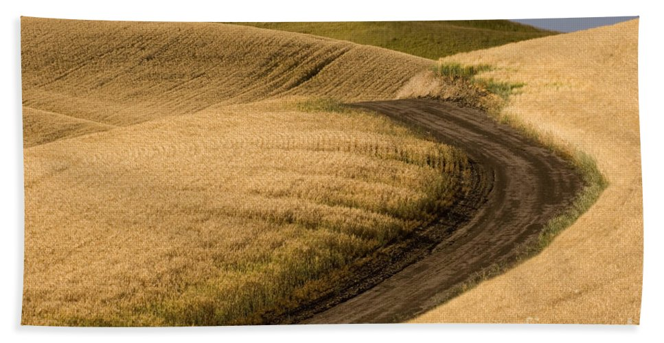 Road Hand Towel featuring the photograph Road Through Wheat Field by John Shaw