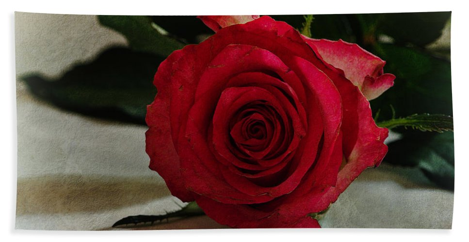 Rose Bath Sheet featuring the photograph Rose by David Pringle