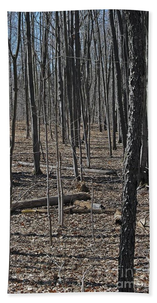 Forest Floor Hand Towel featuring the photograph Run by Joseph Yarbrough